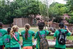 Camp Extended Care KangaCare and K.C. Friday A Before-and After-care Program for Camp KangaZoo and Teen Camp Instructors: Zoo Educators and Zoo ALIVE volunteers KangaCare AM: Campers may be dropped off between 7-8:15 a.