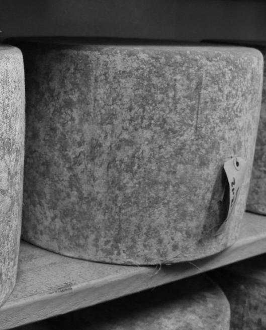 Contents  Welcome CHEESE CATALOG - PDF