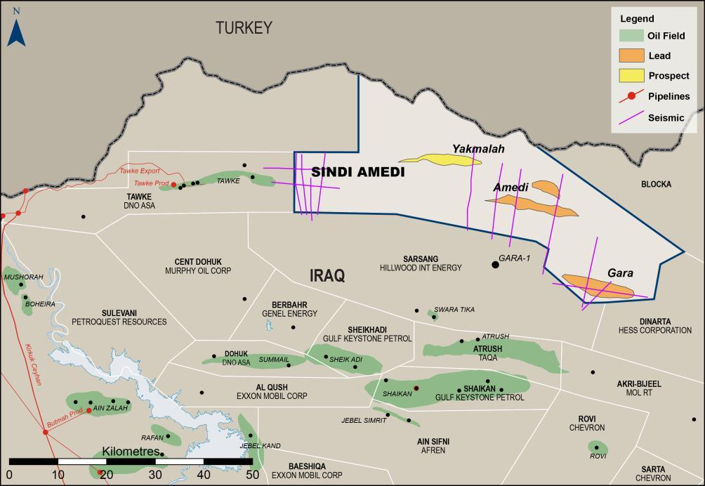 Unrisked Gross (100%) Prospective Resources SINDI AMEDI (KURDISTAN REGION OF IRAQ) Large exploration area with high