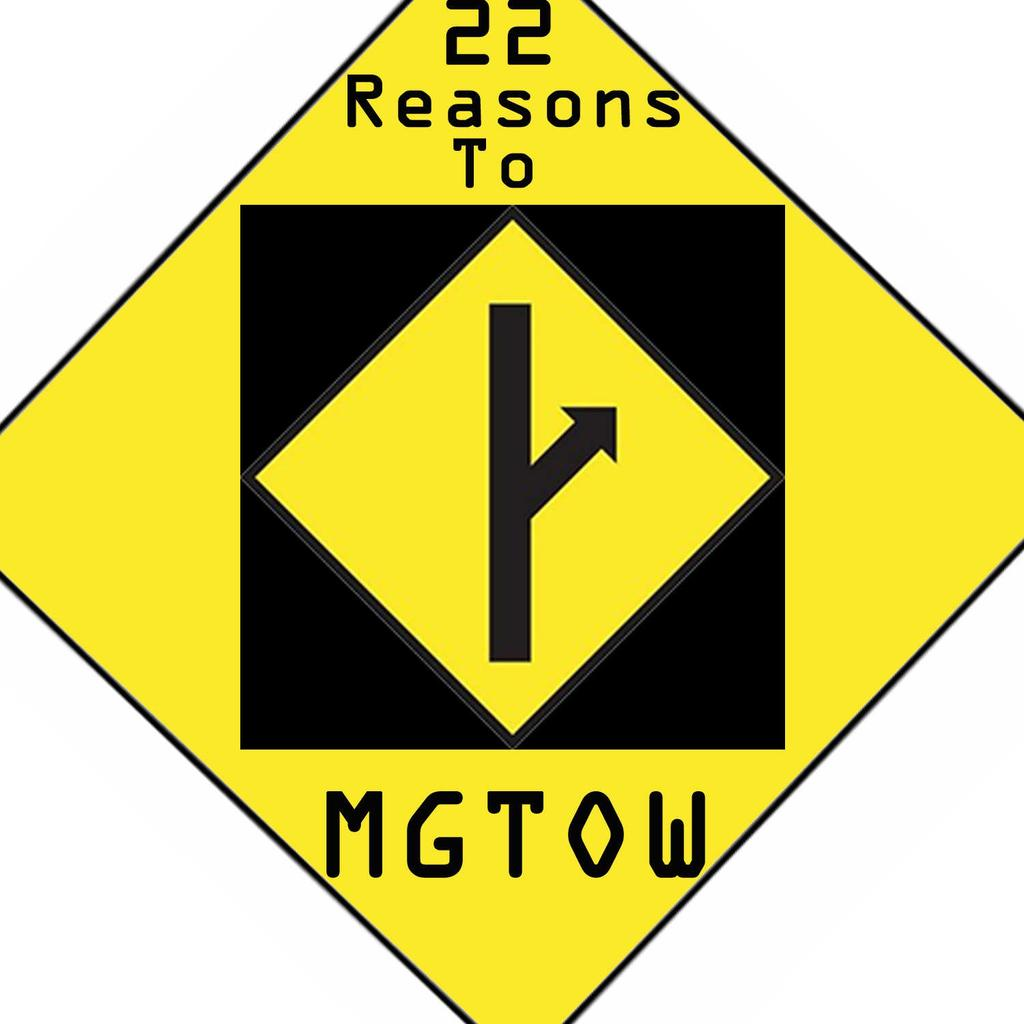 22 reasons to go MGTOW By:Troofova Reethin - PDF
