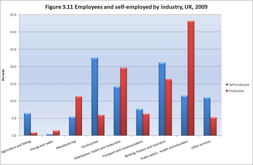 Source: Authors analysis of Labour Force Survey data, 2009 The industrial concentration of self-employment is reflected by its occupational distribution. Figure 3.