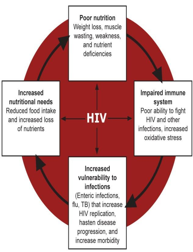 2. A weak immune system allows HIV replication to increase and HIV to progress faster to AIDS. 3.