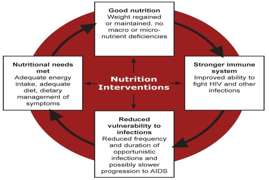 3. Fewer infections mean better appetite, better nutrient absorption and utilisation and adequate energy intake, and the cycle continues. Figure 2.