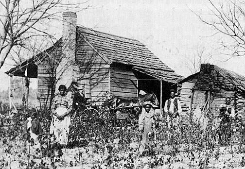 As a result, some African Americans became tenant farmers, farming land that they rented.