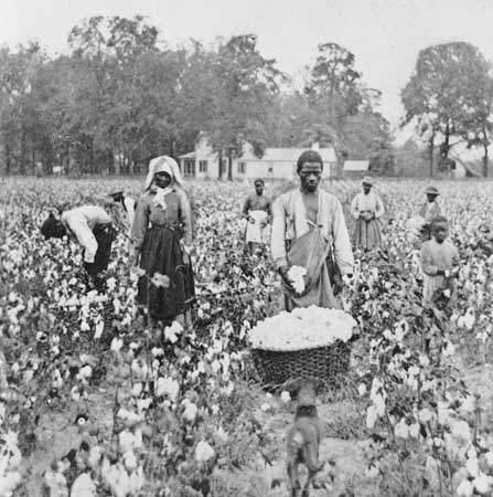 Many Southerners became sharecroppers, persons who worked the owner s land and received a share of the crops in return.