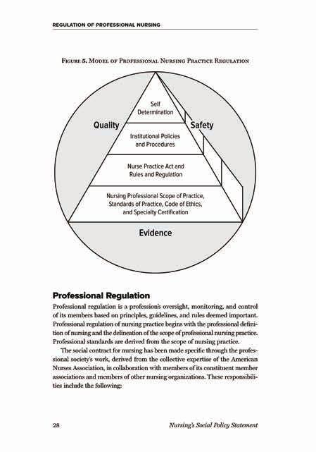 Nursing scope and standards of practice 3rd edition pdf appendix b malvernweather Image collections
