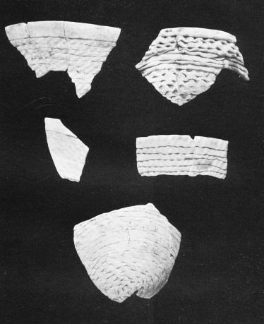 Fifty-six Mancos Black-on-white and 22 McElmo Black-on-white bowls with corrugated exteriors also were recovered (Swannack 1969:78; and see Figure 73a for a McElmo