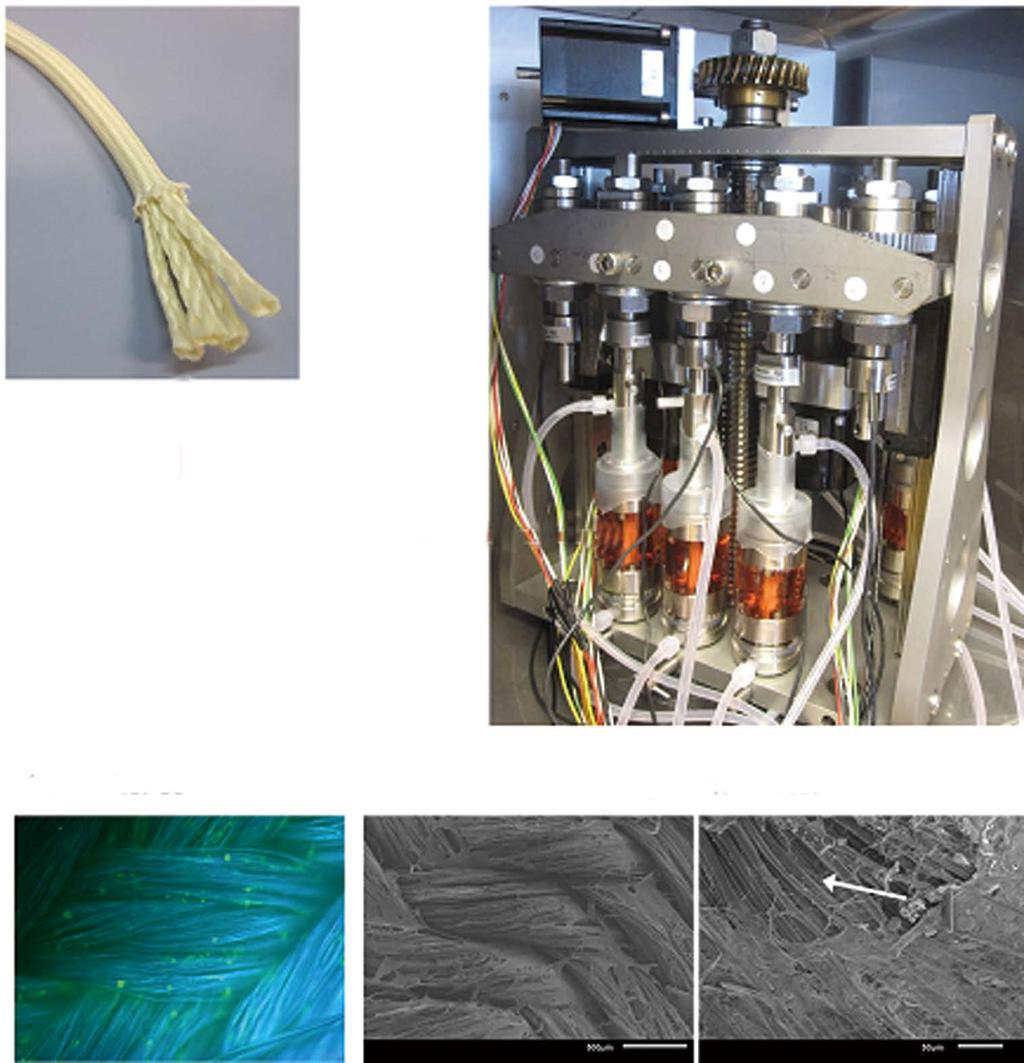 World Journal Of Orthopedics Pdf Deepak Julien On The Web Best Practices For Ethernet Cable Wiring