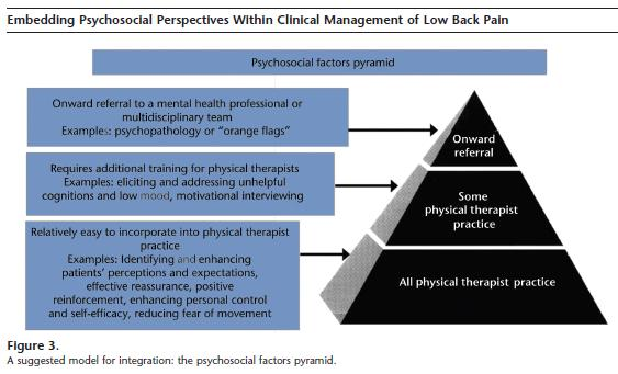 psychologically informed physiotherapy embedding psychosocial perspectives within clinical management 1e physiotherapy essentials