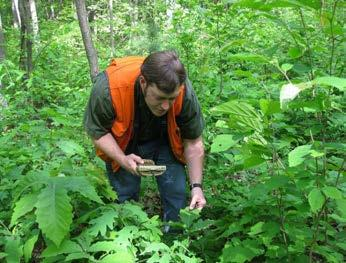 Career Opportunities Pennsylvania State Parks And Forests 10/2017 Can You  Imagine A Job Working