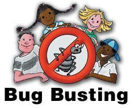 June 15th: National Bug Busting Day: Go on a bug hunt What is our favourite bug?