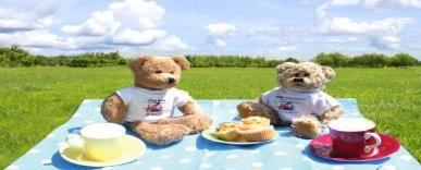 Have a chocolate tea party July 10th Teddy Bear Picnic Day Have a Teddy Bears Picnic Bring our favourite teddy to school