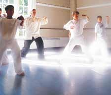 Tai Chi, Is It A Missing Link in Your Health Puzzle? By Steve Burger Good health is a complex combination of very different elements.