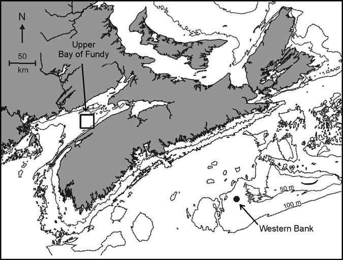 atlantic geology. volume 45. 2009 159 Fig. 3. Map showing horse mussel sampling locations in the Bay of Fundy and on the Scotian Shelf.