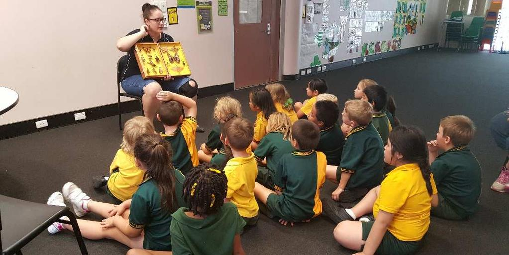 The incursion was planned as part of the Science Unit Mini-beasts being taught in the Year 1 classes this term.