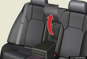 trunk space and rear seat area.