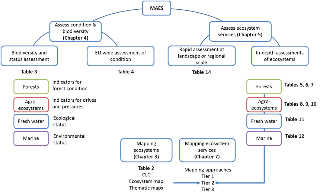 Mapping and Assessment of Ecosystems and their Services   PDF