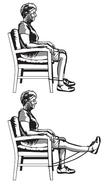 Front Knee Strengthening Exercises You could do this exercise while you are watching TV.