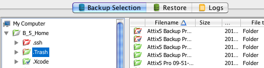 Icon legend On the Backup Selection tab, each file and folder is displayed with an associated icon. The colour of the icon indicates the file or folder s backup selection status.