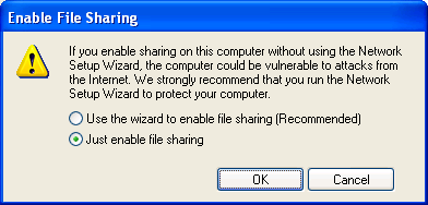 To enable file and printer sharing, you can either click the link to run the Network Setup Wizard or click the link to enable file and printer sharing without running the Network Setup Wizard.