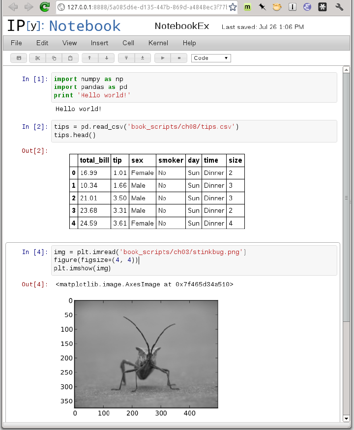 Python for data analysis wes mckinney pdf ipython notebook ipython in mind to be easier to work with fandeluxe Images