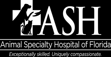 JOB DESCRIPTION VETERINARY ASSISTANT INTRODUCTION The Veterinary Assistant supports the veterinarians, veterinary technicians and receptionists in all duties of the hospital, and ensures a