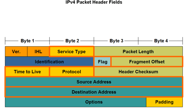 packets Major header fields in the IPv4 protocol Role of each field in transporting packets Grouping Devices into Networks and Hierarchical Addressing Grouping Devices into Networks and