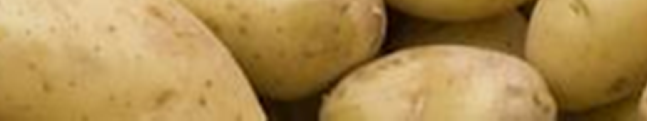 ipot project Industrial Potato monitoring for the Belgian