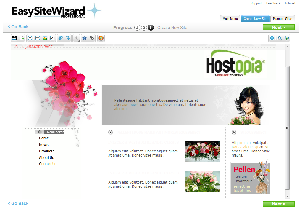 EasySiteWizard Professional 8.7 Chapter 3 18 3.2.5 Using the Site Editor Step three of the wizard allows you to make modifications to your site before previewing or publishing the site.