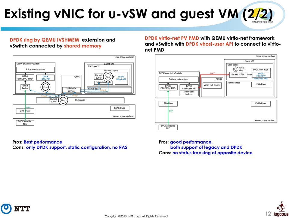 High-performance vnic framework for hypervisor-based NFV