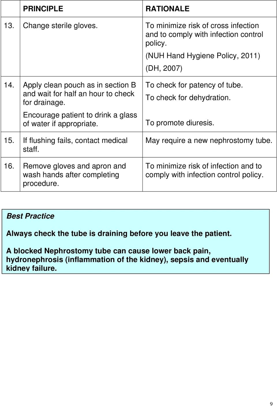 GUIDELINE FOR CARE OF A PATIENT WITH A NEPHROSTOMY TUBE - PDF