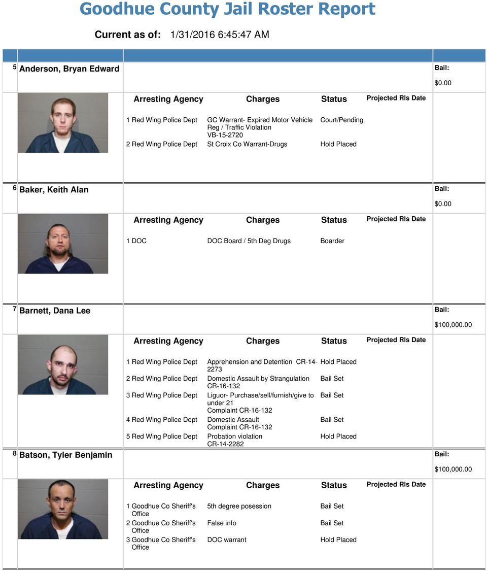 Goodhue County Jail Roster Report - PDF