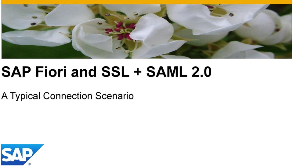 Fiori Auto Km 0.Sap Fiori Overview Of Ssl Saml 2 0 Configuration Pdf Free