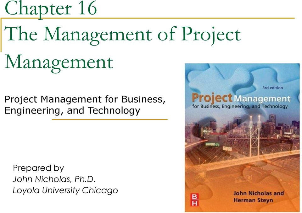 Chapter 16 The Management of Project Management - PDF