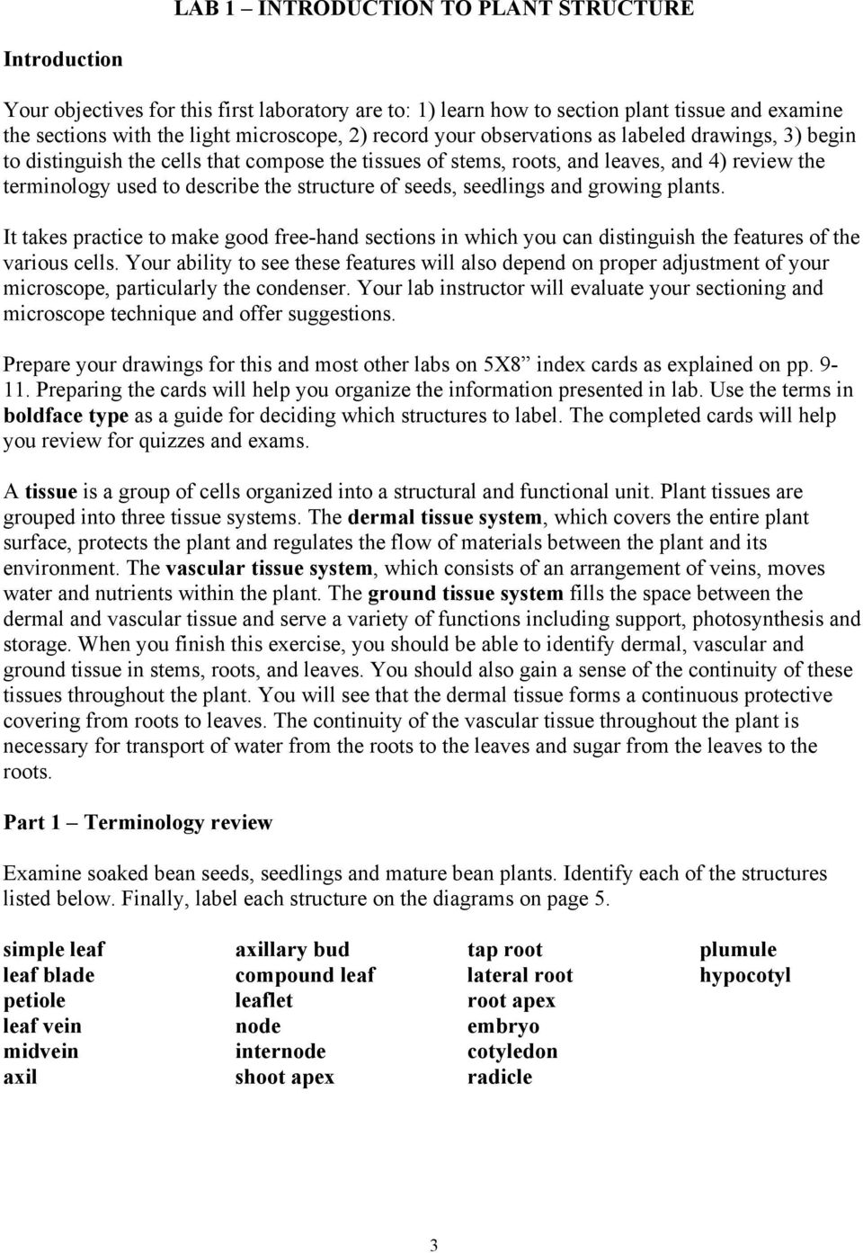 Bio 311 Plant Structure And Development Lab Manual Pdf Bean Seed Germination Diagram 9 3 1 Draw Label A Seedlings Growing Plants It Takes Practice To Make Good Free Hand Sections In
