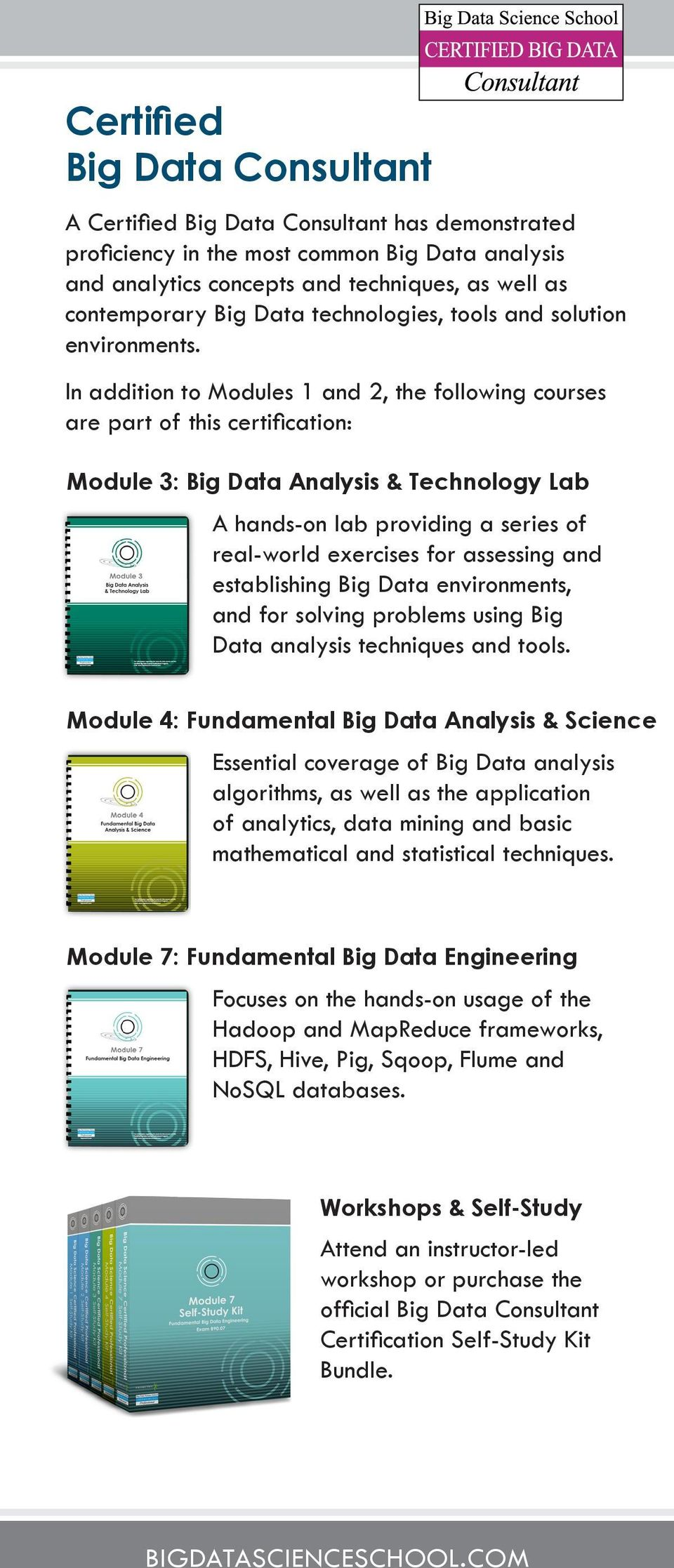 Big Data Science Certified Professional Bdscp Pdf