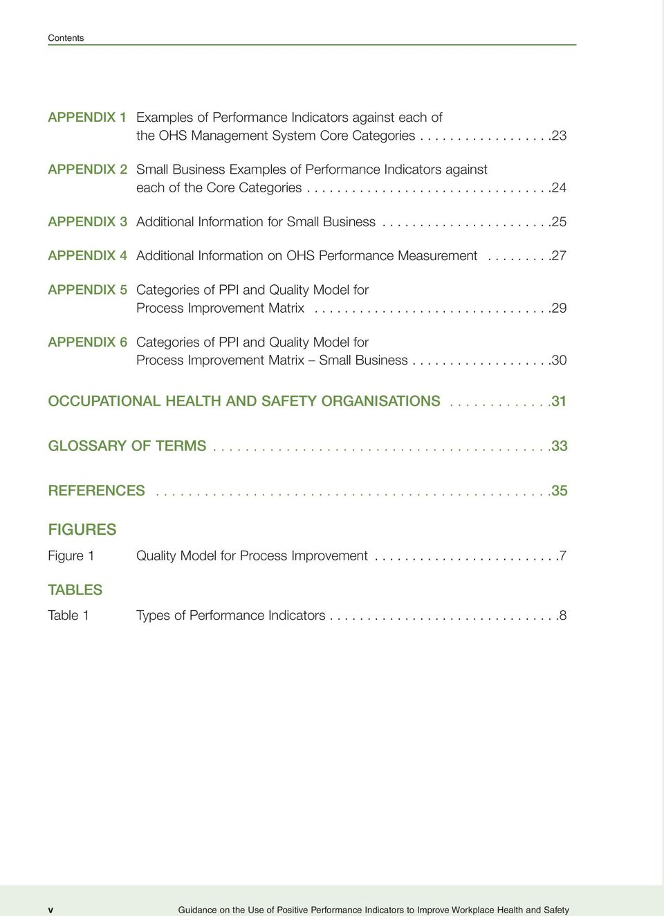 ......................25 APPENDIX 4 Additional Information on OHS Performance Measurement.........27 APPENDIX 5 Categories of PPI and Quality Model for Process Improvement Matrix.