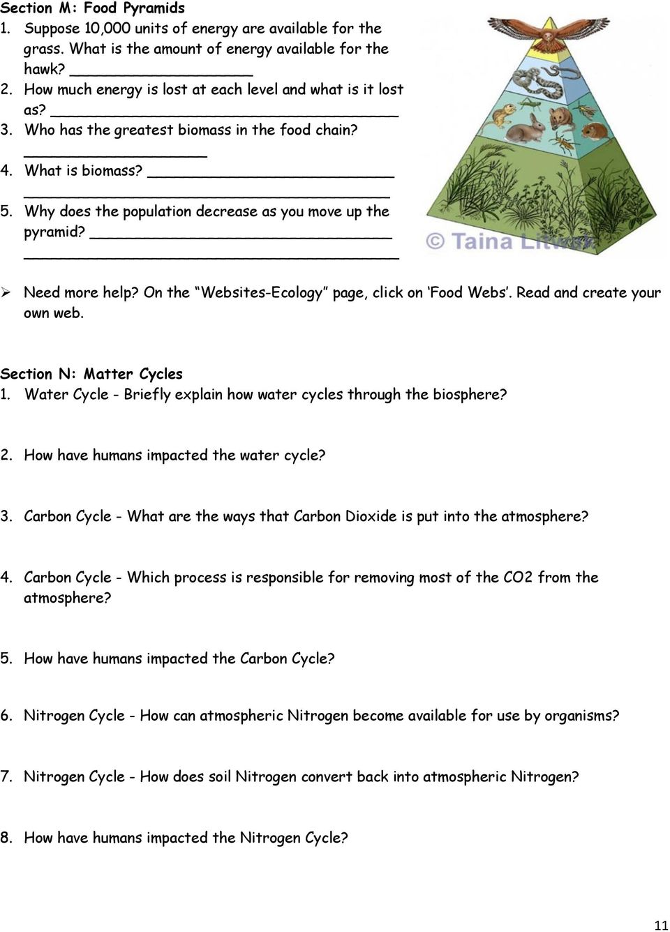 Need more help? On the Websites-Ecology page, click on Food Webs. Read and create your own web. Section N: Matter Cycles 1. Water Cycle - Briefly explain how water cycles through the biosphere? 2.