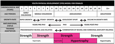 Strength 12-18 months after PHV (PWV) rapid increase in muscle mass Hypertrophy (muscular enlargement from training) Increase in neuromuscular system in