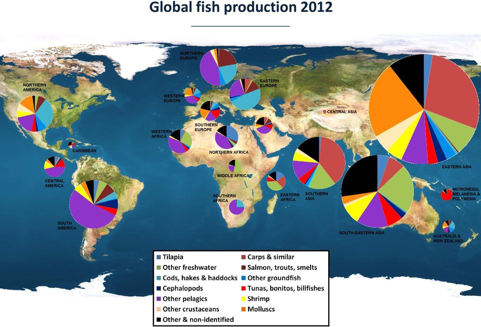 Global Outlook for Shrimp Markets and Demand  Felix Dent Fishery
