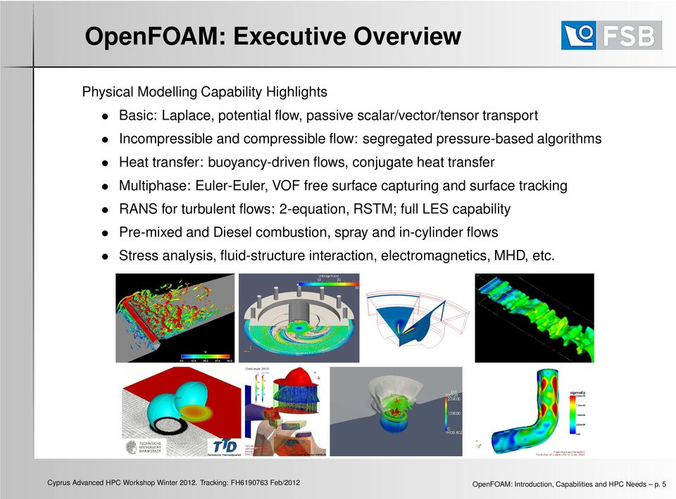 OpenFOAM: Introduction, Capabilities and HPC Needs - PDF