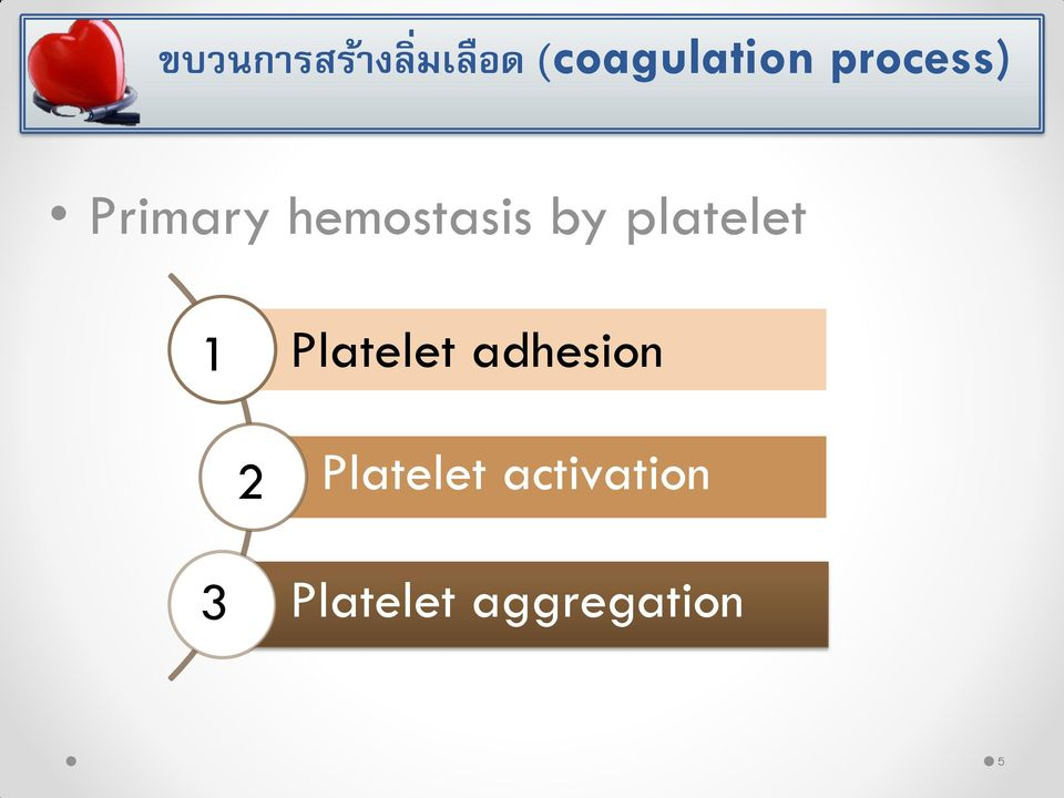platelet 1 Platelet adhesion 2
