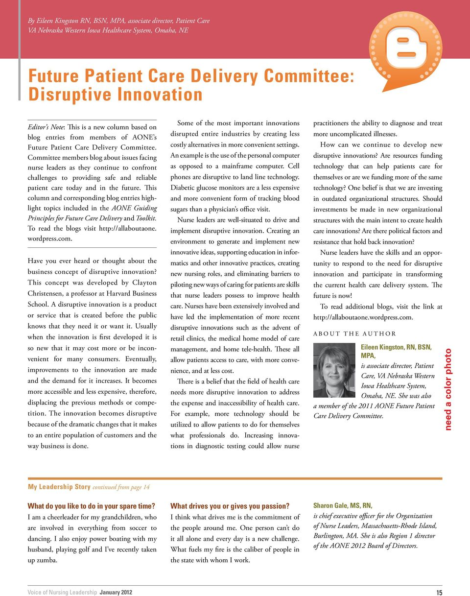 Committee members blog about issues facing nurse leaders as they continue to confront challenges to providing safe and reliable patient care today and in the future.