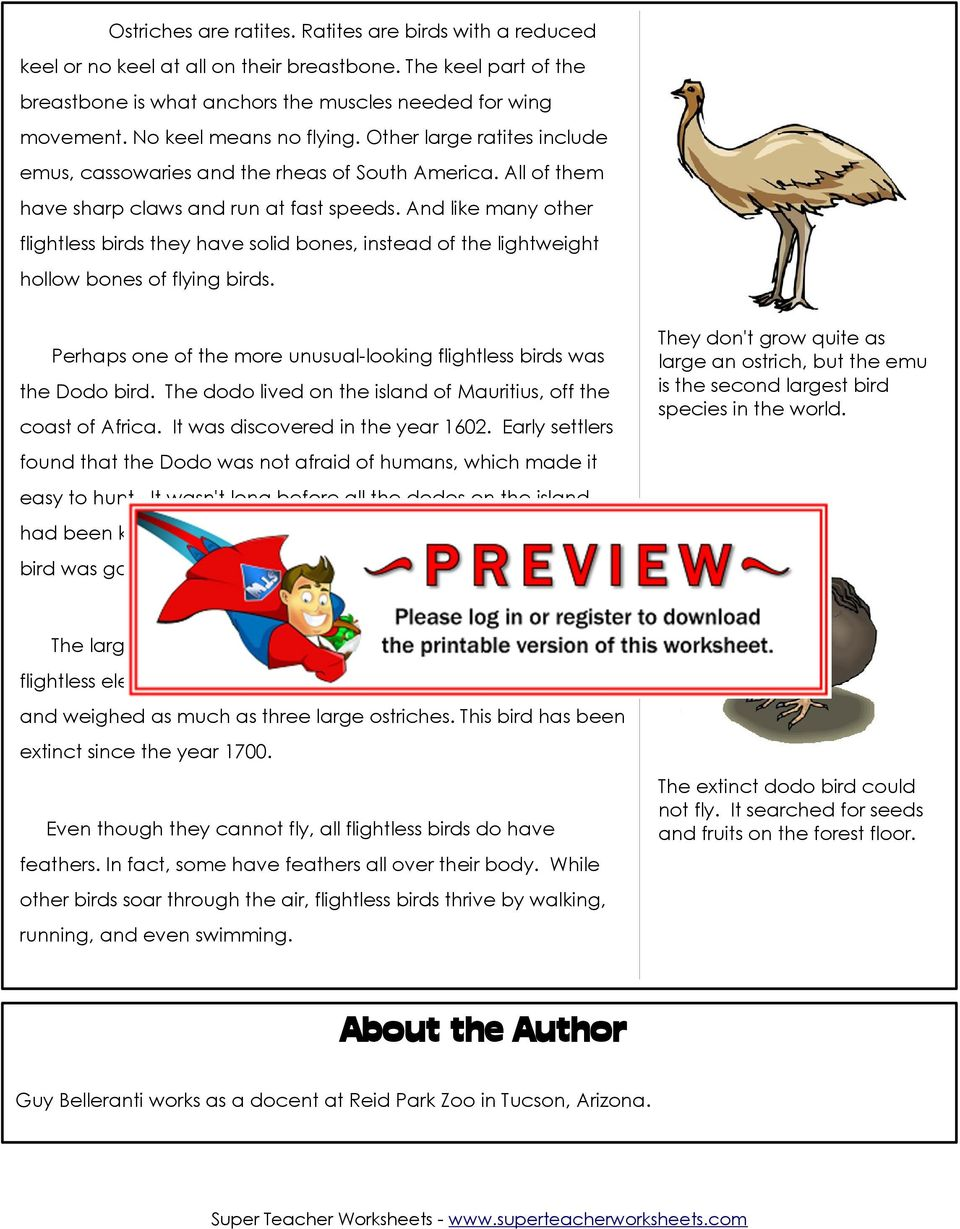 Workbooks super teacher worksheets pdf : Feathered, But Not Ready for Takeoff - PDF