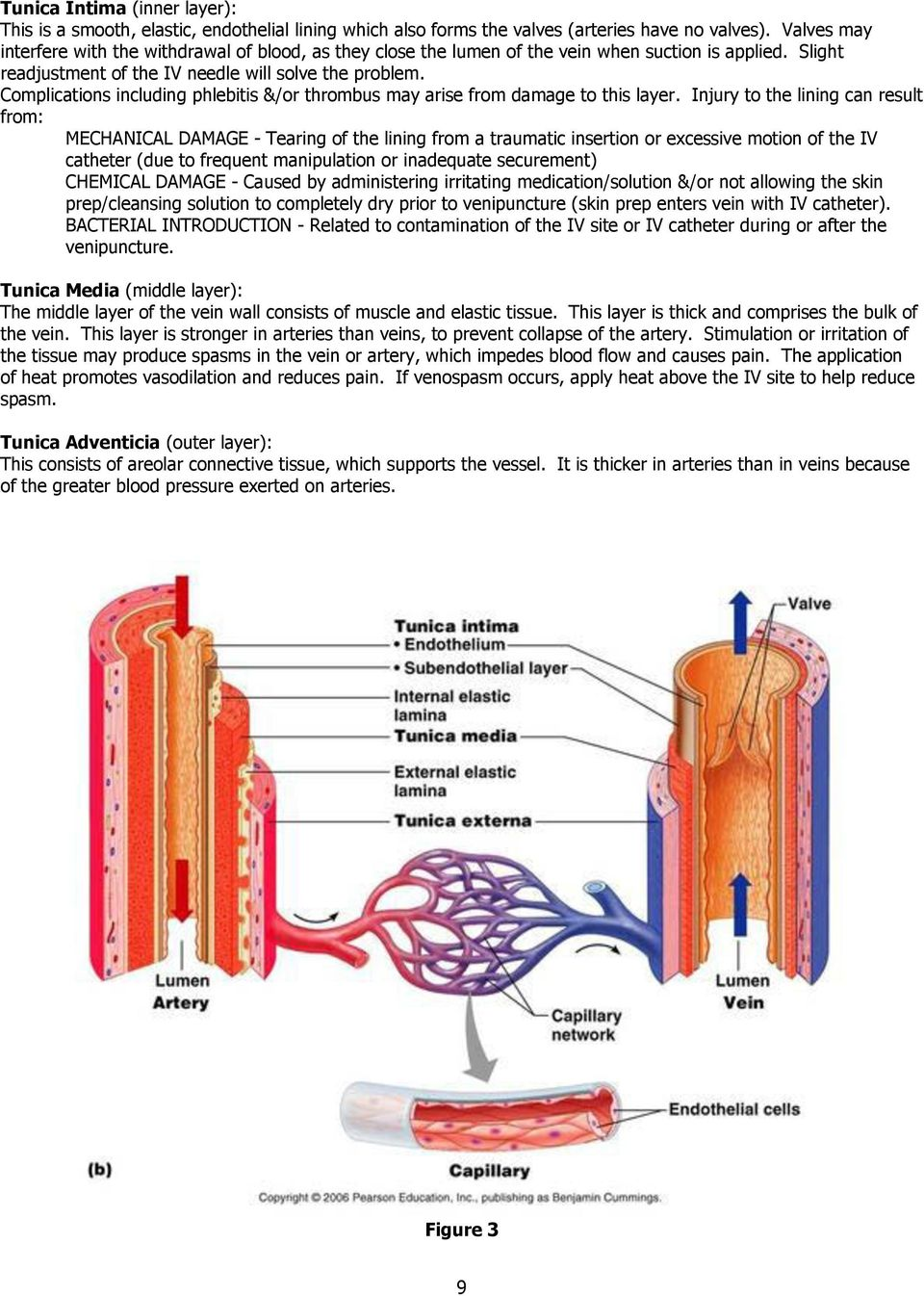 Peripheral Intravenous Initiation Self-Learning Module - PDF