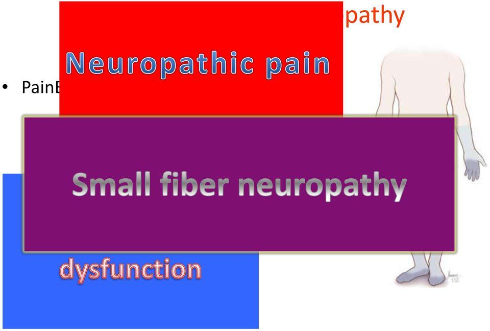 Relationship between fatigue, cognitive dysfunction and