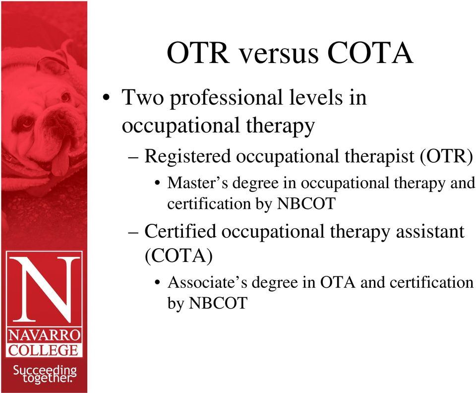 Occupational Therapy Assistant Program. Navarro College - PDF