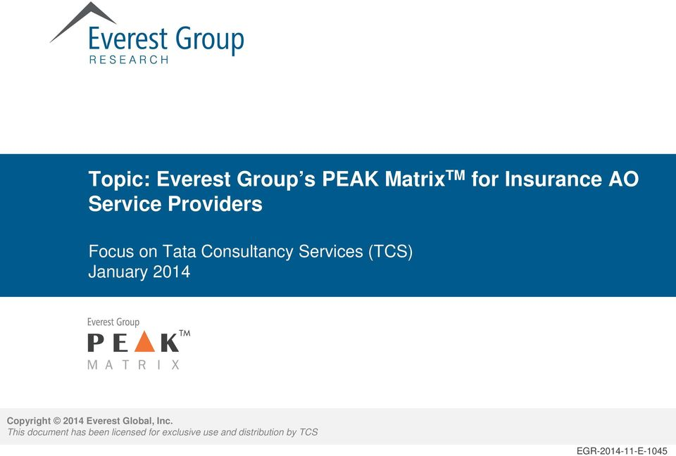 January 2014 Copyright 2014 Everest Global, Inc.