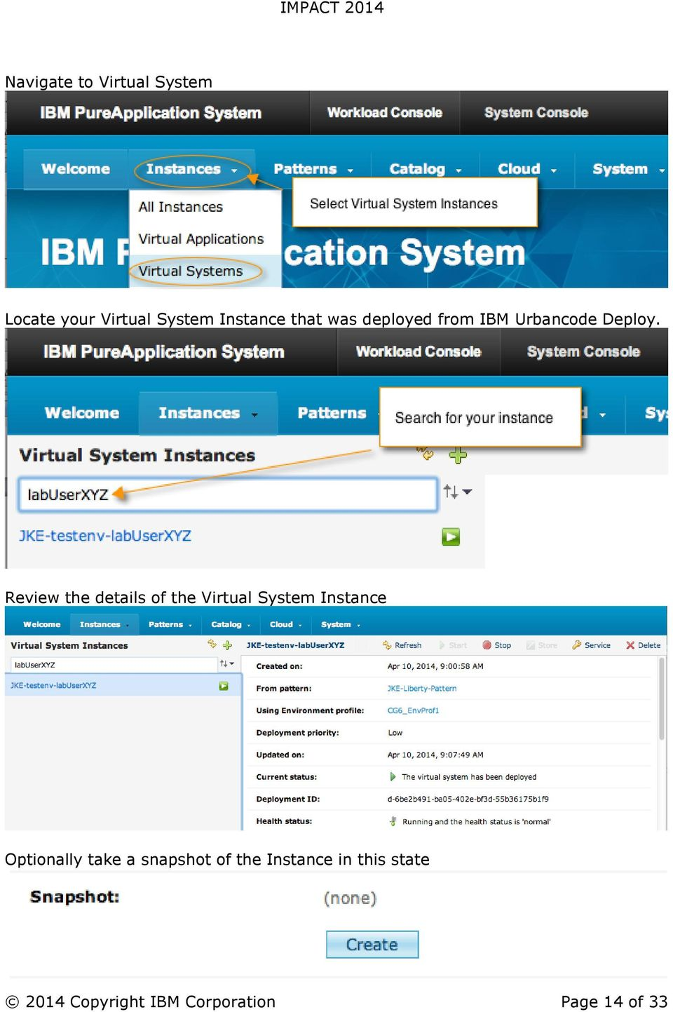 Review the details of the Virtual System Instance Optionally