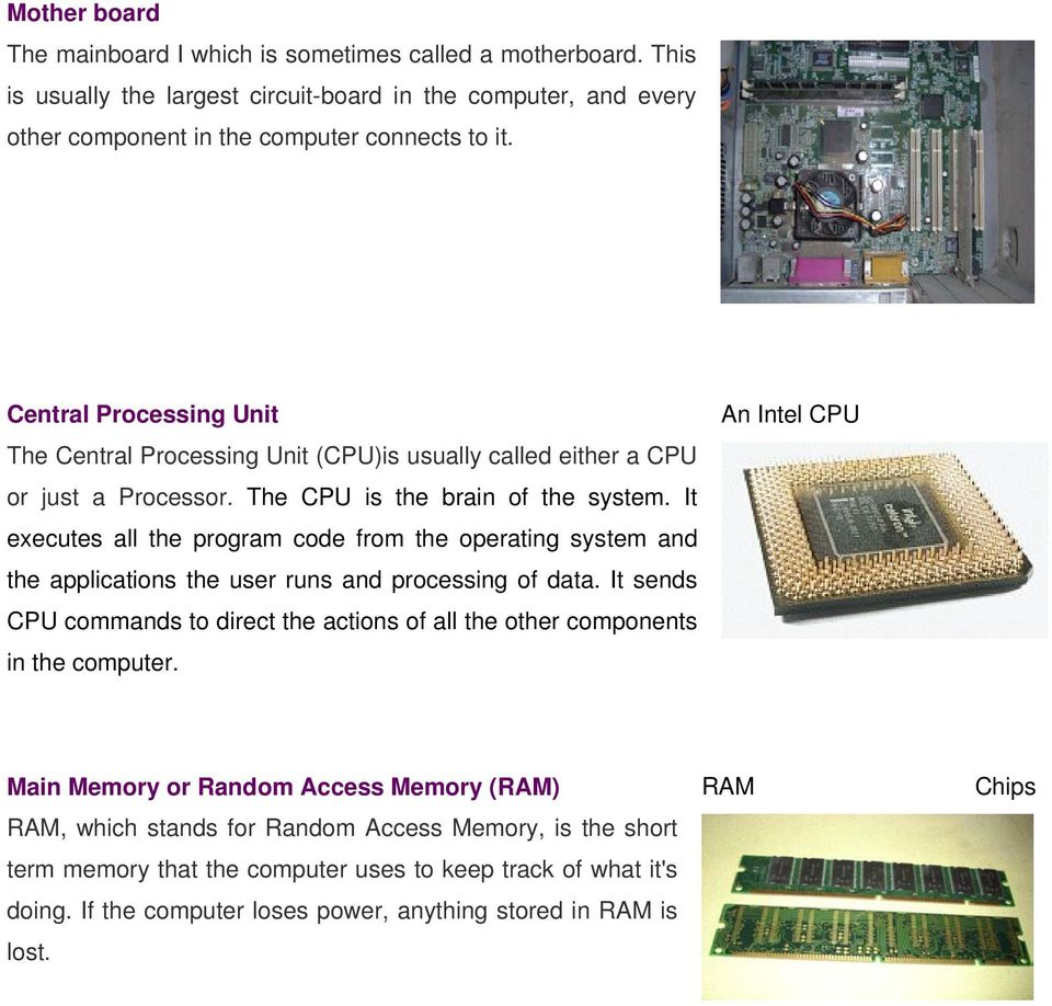 Introduction To Computers Anatomy Of Input And Output Primary Circuit Board Connects All The Basic Components A Computer It Executes Program Code From Operating System Applications User Runs